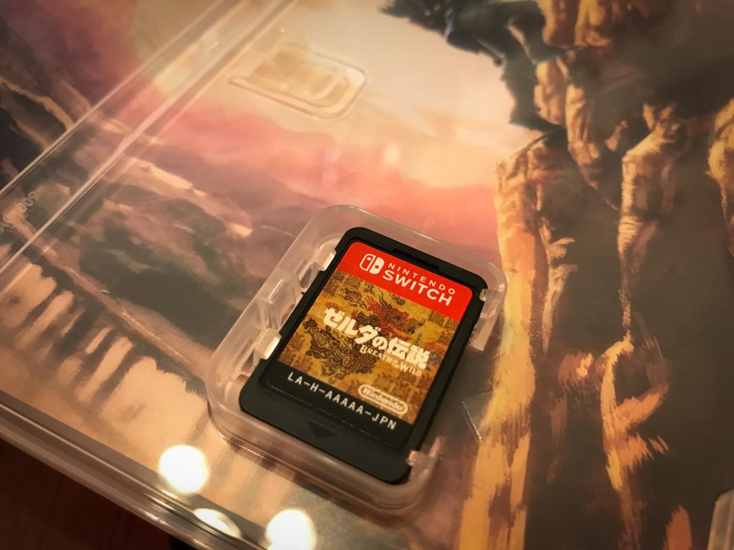 約莫一般 SD 卡大小的遊戲卡夾
